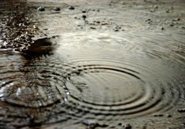 puddle_rain